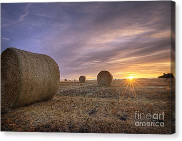 Bales Canvas Print - October Morning by Dan Jurak