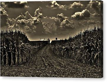 October Sky Canvas Print by Robert Geary