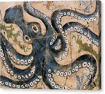 Octopus - Study No. 1 Canvas Print by Steve Bogdanoff