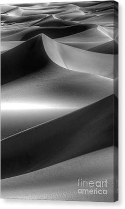 Of Light And Shadow Canvas Print by Bob Christopher