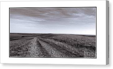 Canvas Print featuring the photograph Off The Beaten Path by Thomas Bomstad