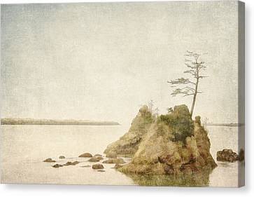 Offshore Rocks Oregon Coast Canvas Print by Carol Leigh