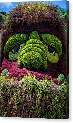 Ogre Canvas Print by Joan Carroll