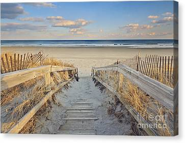 Sand Dunes Canvas Print - Ogunquit Beach Boardwalk by Katherine Gendreau