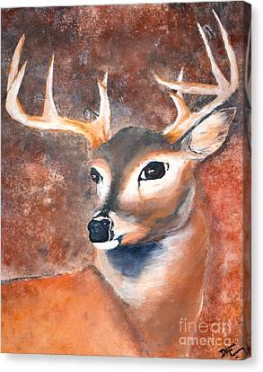 Oh Deer Canvas Print by Denise Tomasura
