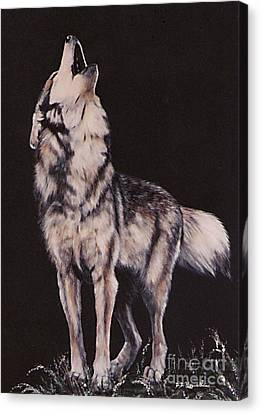 Canvas Print featuring the painting Oh No....coyote Art by DiDi Higginbotham