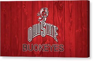 Ohio State Buckeyes Barn Door Canvas Print by Dan Sproul