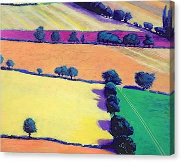 Arable Canvas Print - Oil by Paul Powis