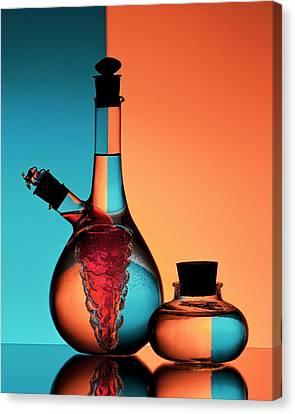 Oil And Vinegar Canvas Print by Aida Ianeva