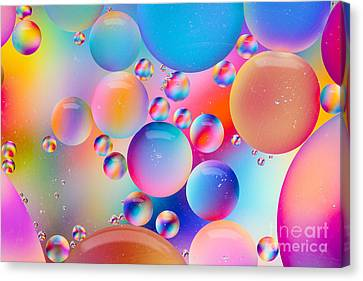Oil And Water Canvas Print by Dawna  Moore Photography