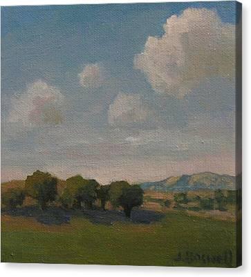 Ojai Oaks Canvas Print by Jennifer Boswell