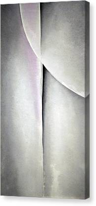 O'keeffe's Line And Curve Canvas Print by Cora Wandel