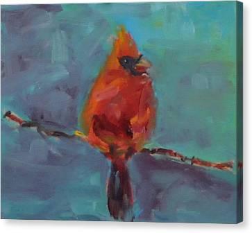 Oklahoma Cardinal Canvas Print by Susie Jernigan