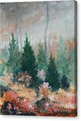 Oklahoma Cedars Canvas Print by Micheal Jones