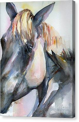 Grey Horse Painting Oklahoma Sunshine Canvas Print by Maria's Watercolor
