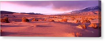 Olancha Sand Dunes, Olancha Canvas Print