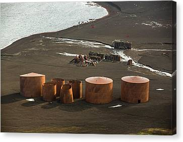 Old Abandoned Whaling Station Canvas Print by Ashley Cooper