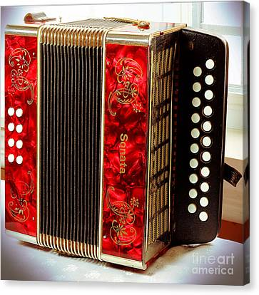 Old Accordion - Music - Cabin Party Canvas Print by Barbara Griffin