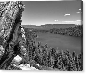 Old And New Of Cascade Lake B And W Canvas Print