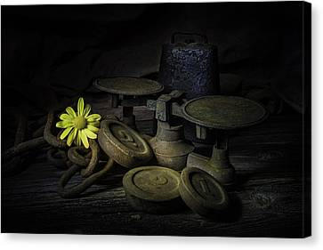 Old And Rusted Still Life Canvas Print by Tom Mc Nemar