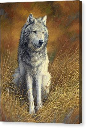 Old And Wise Canvas Print by Lucie Bilodeau