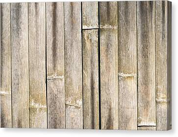 Old Bamboo Fence Canvas Print by Alexander Senin