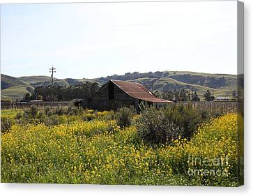 Old Barn In Sonoma California 5d22234 Canvas Print by Wingsdomain Art and Photography