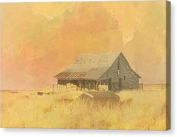 Old Barn On The Prairie Canvas Print by Ann Powell