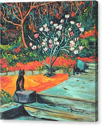Old Bear Cat And Blooming Magnolia Tree Canvas Print by Asha Carolyn Young