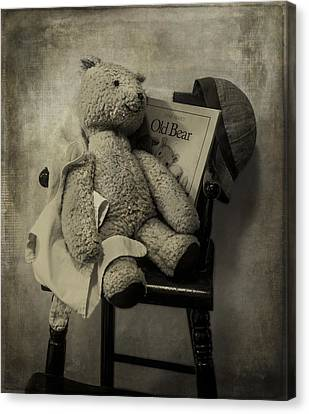 Old Bear Canvas Print by Wayne Meyer