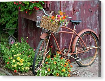 Old Bicycle With Flower Basket Next Canvas Print by Panoramic Images
