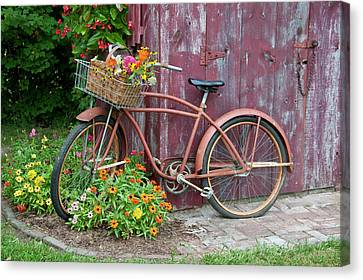 Shed Canvas Print - Old Bicycle With Flower Basket Next by Richard and Susan Day