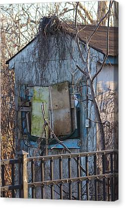 Old Blue Shack Canvas Print by Tom Gari Gallery-Three-Photography