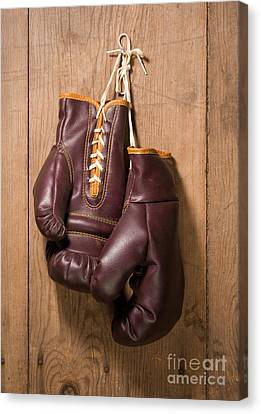 Old Boxing Gloves Canvas Print