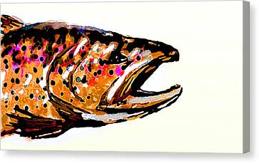 Old Brown Trout Canvas Print by Owl Jones