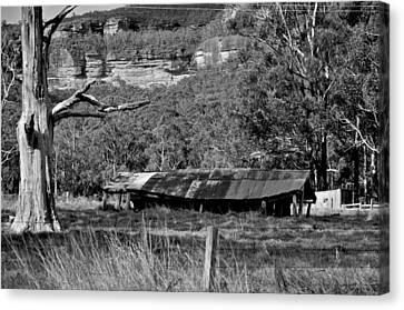 Old Bush Shed Canvas Print