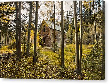 Old Cabin In Iron Town Colorado Canvas Print