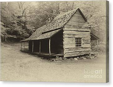 Old Cabin Canvas Print by Todd Bielby