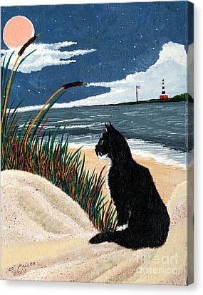 Old Cat And The Sea Canvas Print by Edward Fuller