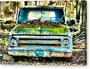 Old Chevy Truck Canvas Print by Lorri Crossno