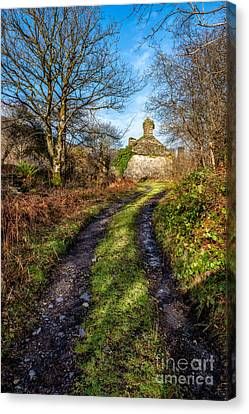 Old Cottage Canvas Print by Adrian Evans