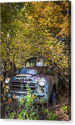 Old Dodge Canvas Print by Debra and Dave Vanderlaan