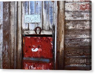 Lucky Old Door 1 Canvas Print
