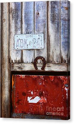 Lucky Old Door 2 Canvas Print by James Brunker