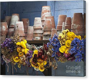 Old English Victorian Potting Shed Canvas Print
