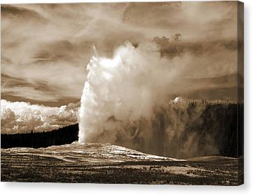 Old Faithful In Yellowstone Canvas Print