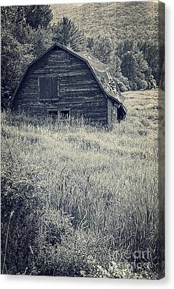 Old Falling Down Barn Blue Canvas Print by Edward Fielding