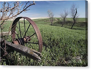 Old Farm Wagon Canvas Print