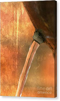 Old Flow Canvas Print by Dave Bosse