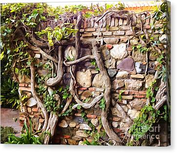 Old Garden Wall Canvas Print by Lutz Baar